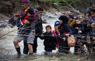 Siriani al guado